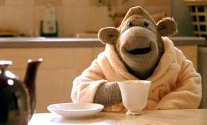 An Arctic Monkey Relaxing With A Nice Cup Of Tea